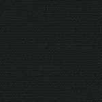 schwarz (09)